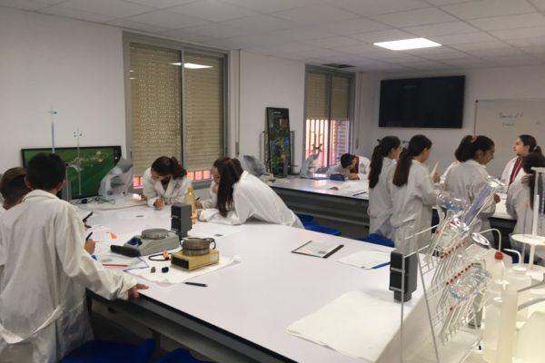 laboratorio-3eso-1